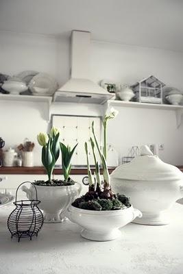 Detalhes na cozinha também em branco