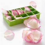 Gelo com pétalas de rosa comestíveis no blog detalhes magicos
