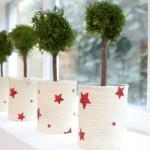 Estrelas de Natal no blog Detalhes Magicos