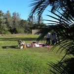 Jardim Botanico de Porto Alegre no blog Detalhes Magicos