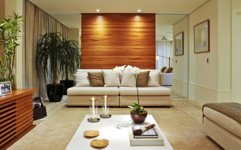Plantas dentro de casa detalhes m gicos for Modelo de casa x dentro